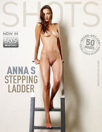Anna S stepping ladder