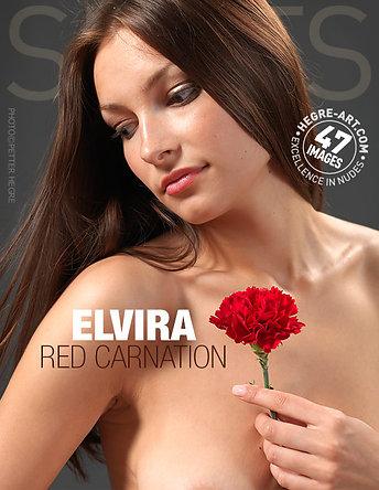 Elvira clavel rojo