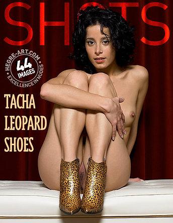 Tacha zapatos leopardo