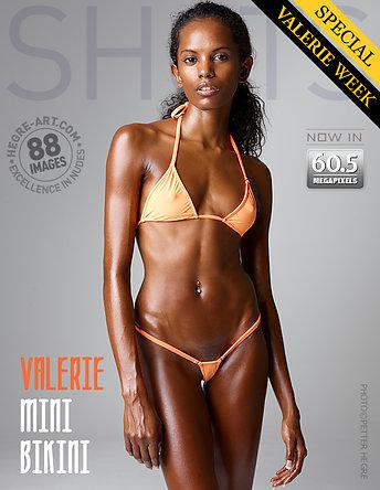 Valerie mini bikini