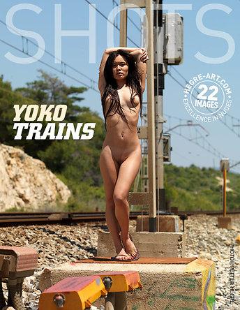 Yoko trainiert