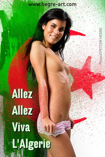 E-Karte: FIFA Weltmeisterschaft 2010 Algerien E-Karte