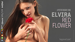 Elvira Red Flower