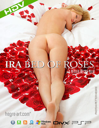 Ira Bed of Roses