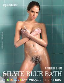 シルビー ブルーバス