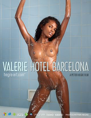 バレリー ホテルバルセロナ