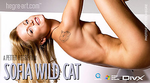 Sofia wild cat