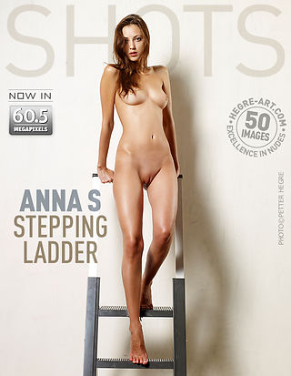 Anna S stepping ladder