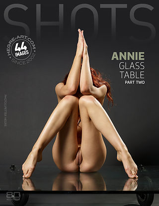 Annie glass table part2