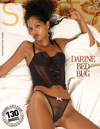 Darine bed bug
