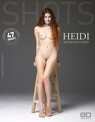 Heidi introduction