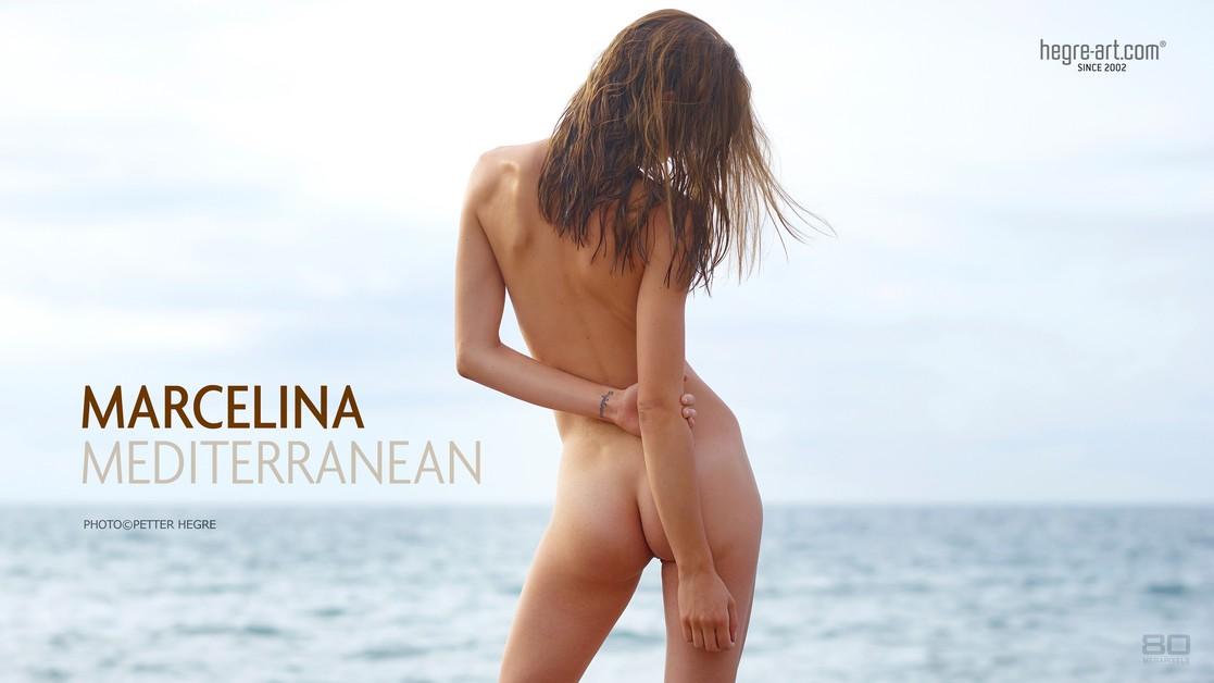 Marcelina Méditerranéenne