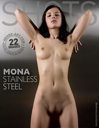 Mona stainless steel