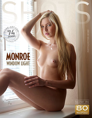 Monroe window light
