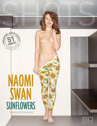 Naomi Swan sun flowers