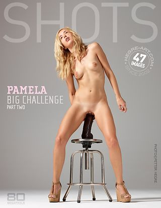 Pamela big challenge part2