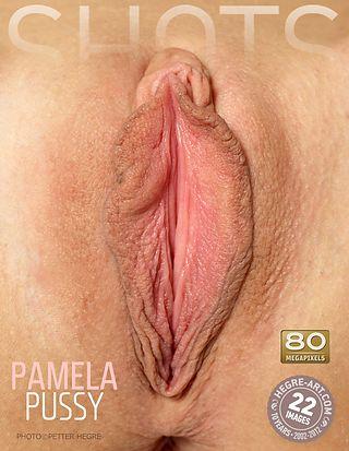 Pamela coño