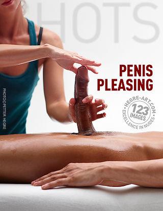 Penis pleasing