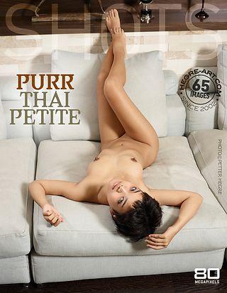 Purr Thai petite