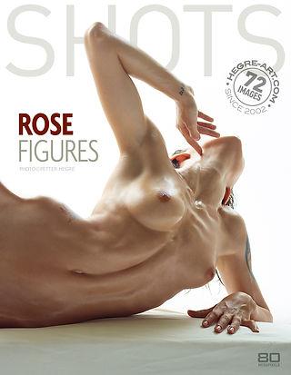 Rosa figuras