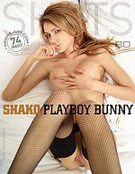 Shako Playboyhäschen
