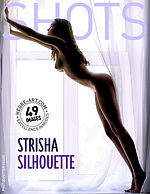 Strisha silhouette