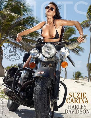 Suzie Carina Harley Davidson