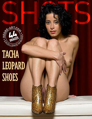Tacha leopard shoes