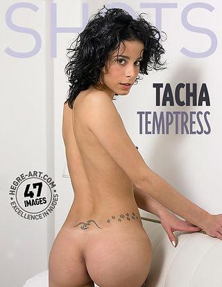 Tacha temptress