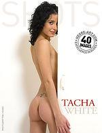 Tacha white