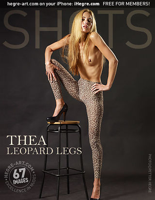 Théa collants léopards