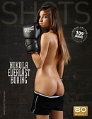 Nikola everlast boxing