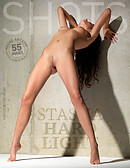 Stasha hard light
