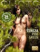 テレザ パイングリーン