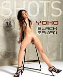 Yoko cuervo negro
