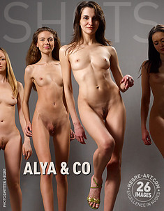 Alya and Co