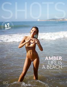 Amber vida en la playa