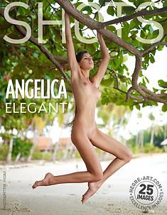 Angelica elegante