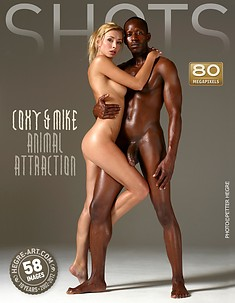 Coxy and Mike animal attraction