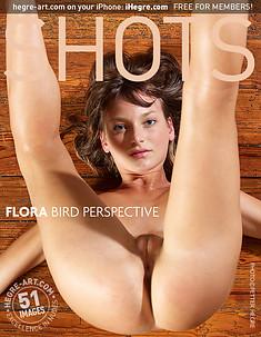 Flora vista de pájaro