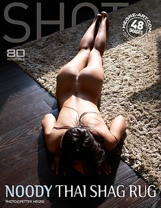 Noody Thai shag rug