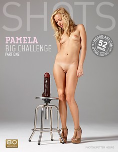 Pamela big challenge part1