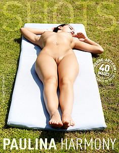 Paulina harmony