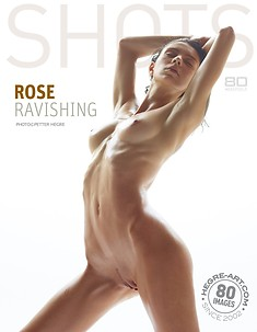 Rose ravishing