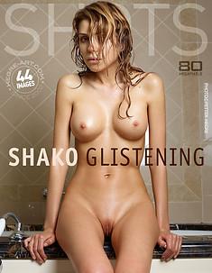 Shako glistening