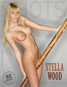 Stella Holz