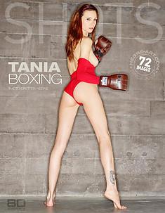 Tania boxing