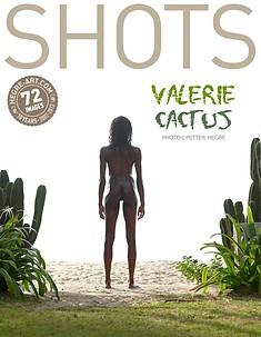 Valérie cactus