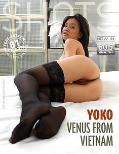 Yoko venus du Vietnam