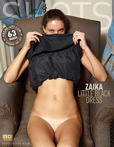 Zaika little black dress